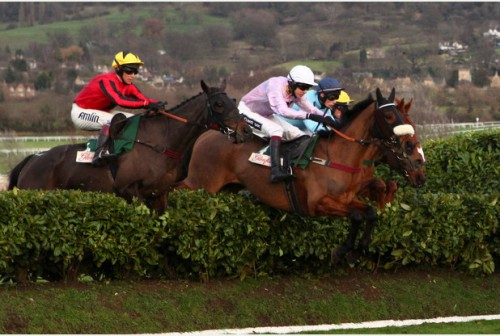 GLENFARCLAS CROSS COUNTRY HANDICAP CHASE (Picture by Rosemary Watts)