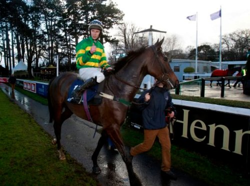 Horse Racing - January Jumps Weekend - Day One - Leopardstown Racecourse