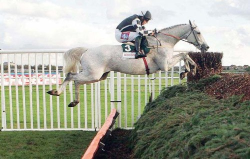 MONET'S GARDEN ridden by Tony Dobbin wins at AINTREE 28/10/07 Photograph By JONATHAN GROSSICK.